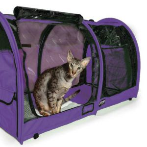Sturdi Show Shelter - purple