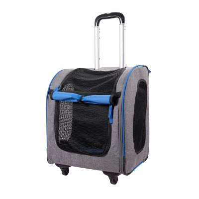 Transporter 3in1 Liso - sapphire
