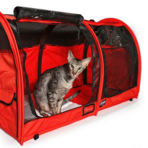 Sturdi Show Shelter - red